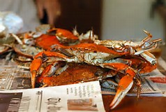 hard crabs